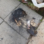 Porter Cable bag turned to ashes